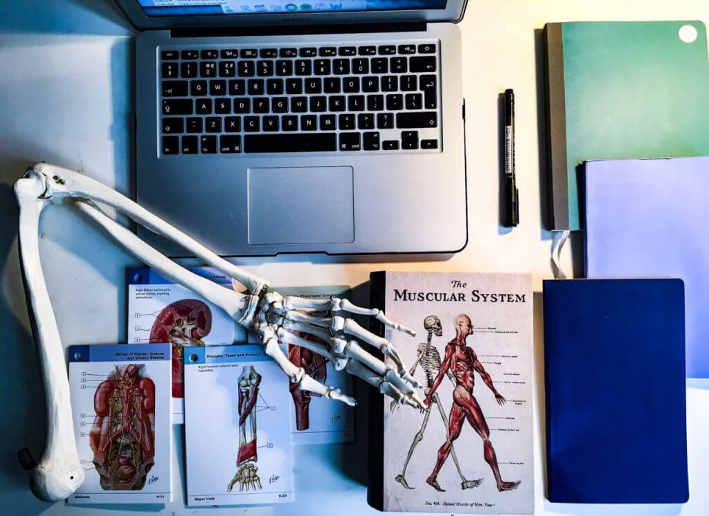 Notepads, pen, laptop, medical books, flashcards and an arm of a skeleton